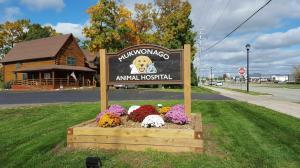 mukwanago-animal-hospital-(5)